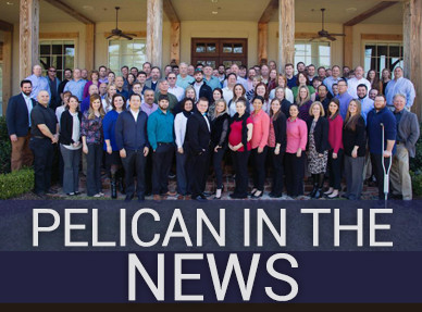 Pelican in the News