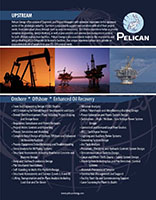 Pelican Energy Upstream brochure
